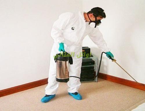 شركة مكافحة حشرات في الفجيرة |0566300399| لخدمات ابادة فورية